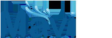 Mavi Havuz Ekipmanları ve Kimyasalları Alanya